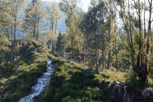 Balneario Manzanera. El Paraíso